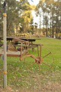 Photo of old wheelbarrow used as a garden setting. Leaves & Fishes restaurant