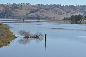 Photo of reflections and light on the Murrumbidgee River