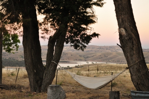 Hammock slung between two trees, overlooking rolling hills and the lake - with no other signs of life as far as the eye can see