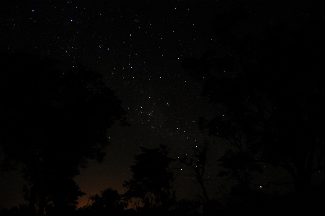 A million stars blaze in the moonless night sky, outback NSW