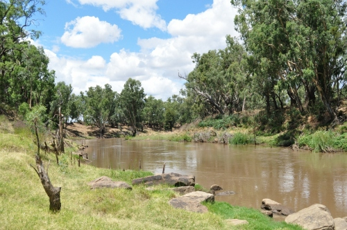 Macquarie River Terramungamine Reserve